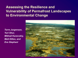 Assessing the Resilience and Vulnerability of Permafrost