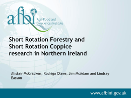 Short Rotation Forestry and Short Rotation Coppice research in