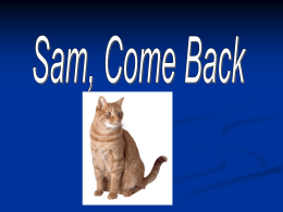Sam Come Back!1.1