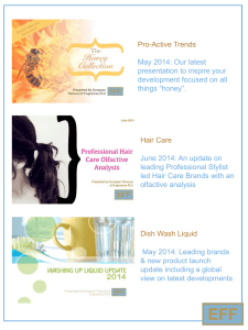 Premium Haircare Review An analysis of the key UK premium salon
