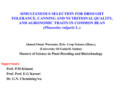 simultaneous selection for drought tolerance, canning and