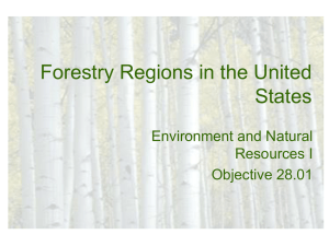 US Forestry Regions Powerpoint