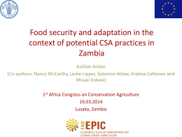 Food security and adaptation in the context of potential CSA