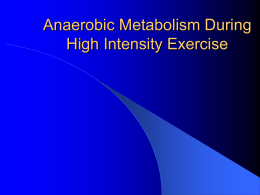Anaerobic Metabolism