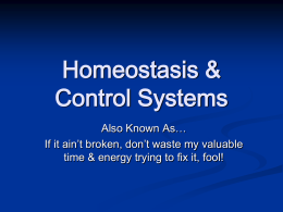 Homeostasis & Thermoregulation