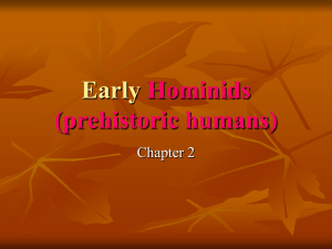 hominids - Hale Charter Academy