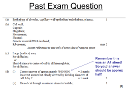 Past Exam Question