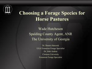 Choosing a Forage Species for Horse Pastures