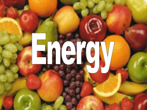 Lesson 14 Energy balance and measurement