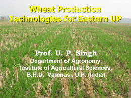 Prof. U. P. Singh ,Institute of Agricultural Sciences