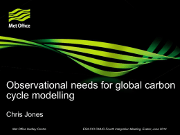 Observational needs for global carbon cycle modelling