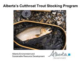 Alberta`s Cutthroat Trout Stocking Program - ESRD