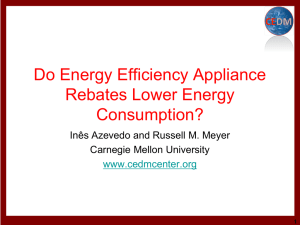 Effects of rebates on energy consumption