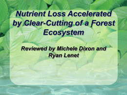 Nutrient Loss Accelerated by Clear