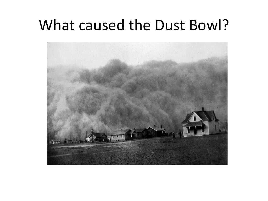 Essays on Dust bowl
