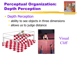Depth Perception and Perceptual Organization PowerPoint