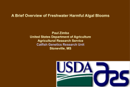 A Brief Overview of Freshwater Harmful Algal Blooms Paul Zimba