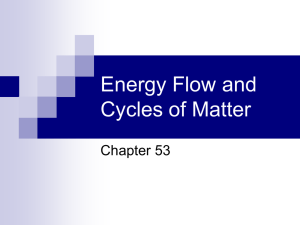 Energy Flow and Cycles of Matter
