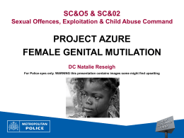 FGM powerpoint