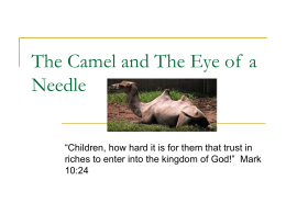 The Camel and The Eye of a Needle