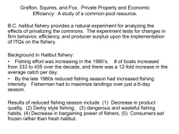 Grafton, Squires, and Fox. Private Property and Economic Efficiency
