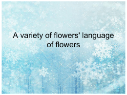 A variety of flowers` language of flowers