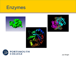 Enzymes - Snab Online