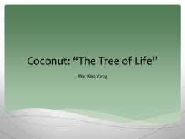 Coconut.MAI - Facultypages.morris.umn.edu