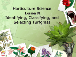 Horticulture Science