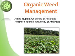 Organic Weed Management - Sustainable Organic Horticulture