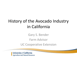 History of the Avocado Industry in California