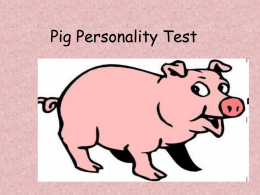 Pig Personality Test
