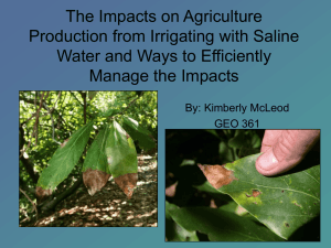 The Impacts on Agriculture Production from Irrigating with
