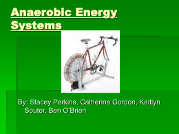 Anaerobic Energy Systems