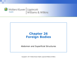 Foreign Body 2013
