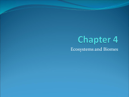 Chapter 4 Science Notes