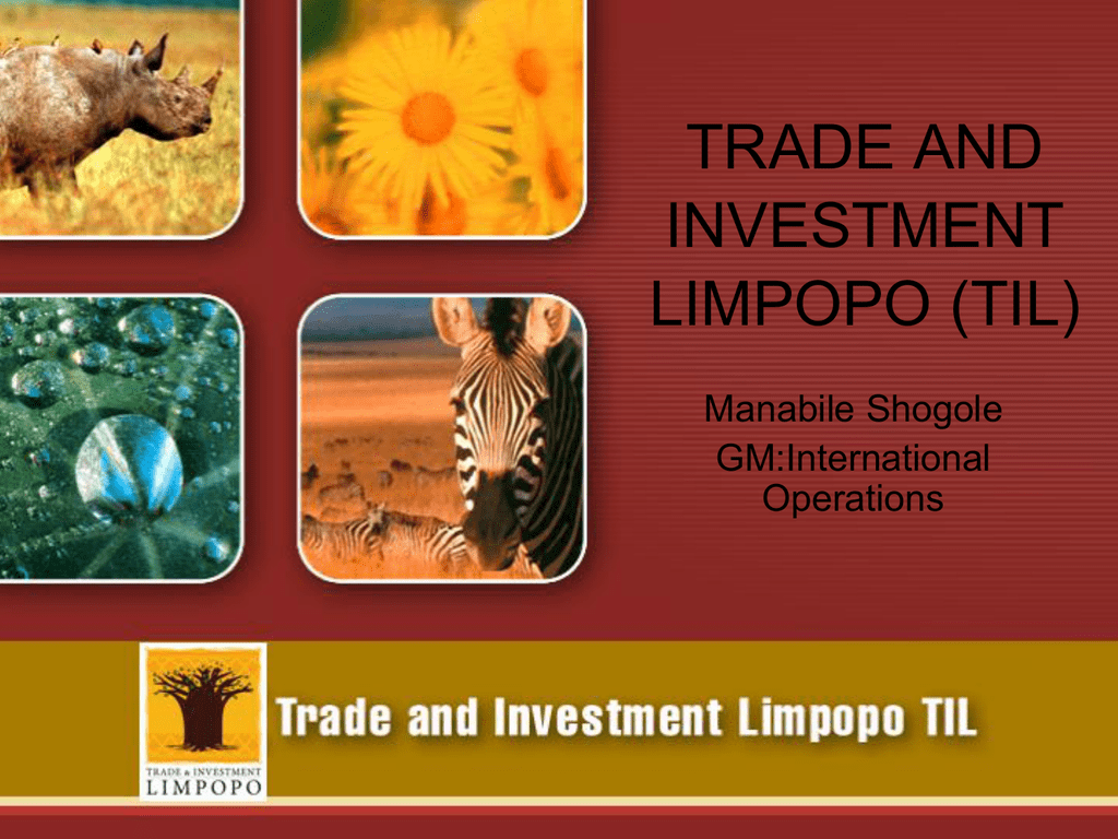 Trade and investment limpopo ceo compensation investmentgesellschaft definition of culture