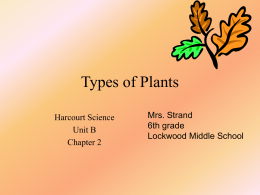 Types of Plants - Lockwood Schools