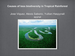 Causes of loss biodiversity in Tropical Rainforest - i