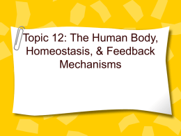 Topic 12 Homeostasis_Human Body Systems