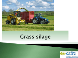 Silage Dry Matter Conversion factor