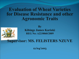 Evaluation of Wheat Varieties for Disease Resistance and other