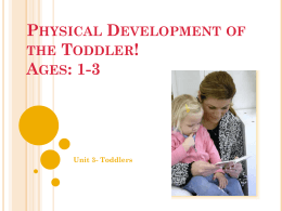 Physical Development of the Toddler!