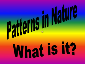 what is it patterns in nature