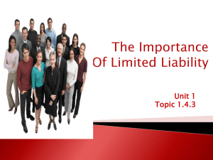 The Importance of Limited Liability