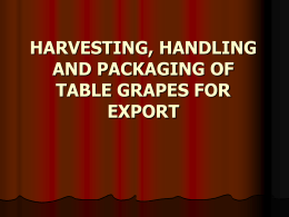harvesting, handling and packaging of table grapes for