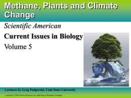 Methane, Plants and Climate Change