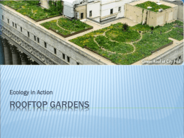 Ecology in Action: Rooftop Gardens Presentation
