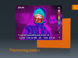 Lecture - Thermoregulation