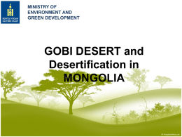 Government Policy to Combat Desertification - UN